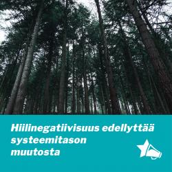 kuvassa metsää ja otsikon teksti