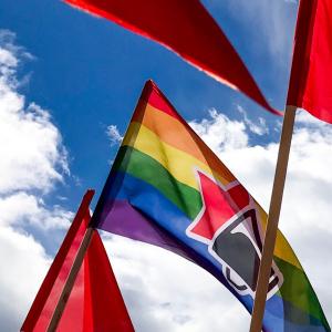 kuvassa vasemmistolaisia lippuja